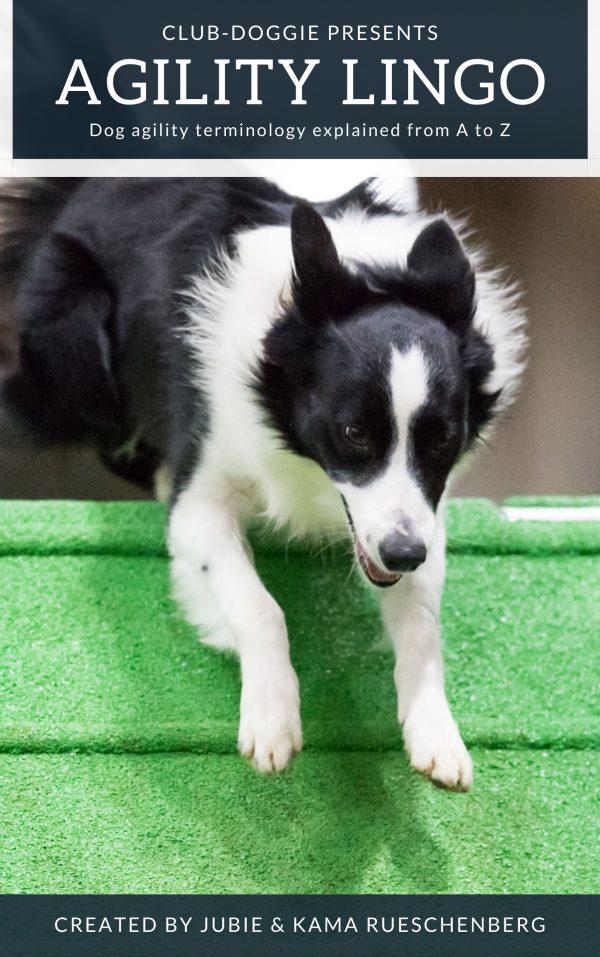 Club-Doggie Presents Agility Lingo Dog Agility Terminology from A to Z Ebook